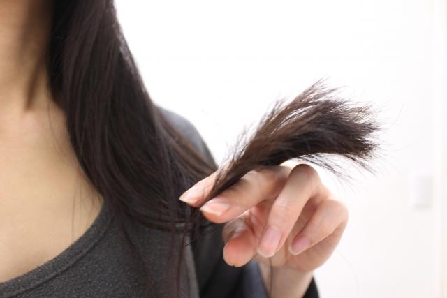 秋の髪ダメージは夏の紫外線が原因